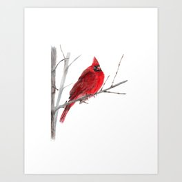 Cardinal on Winter Tree Art Print
