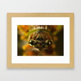 Cicada Chaos Framed Art Print