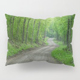 Arcol Road Pillow Sham
