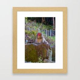 Deep Monkey Thoughts Framed Art Print