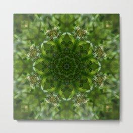 """""""Make a wish"""" Dandelion reflection Metal Print"""