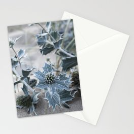 beach thistle Stationery Cards