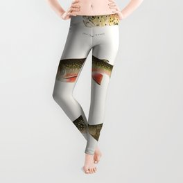 Illustrated North American Freshwater Trout Game Fish Identification Chart Leggings