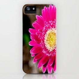 Garvinea Sweet Fiesta Gerber Daisy iPhone Case