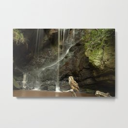 Eagle Owl and Waterfall. Metal Print