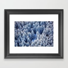 Pines Framed Art Print