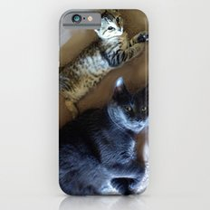 Kitty see kitty do... iPhone 6s Slim Case