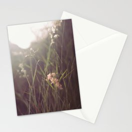 Dream Valley  Stationery Cards