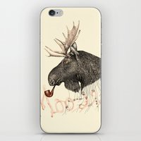 moose iPhone & iPod Skins featuring moose by dogooder