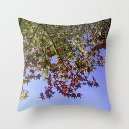 Red Maple Sky Throw Pillow