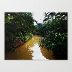 Camuy River @ Camuy, Puerto Rico Canvas Print