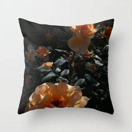 Peaches & Creme Throw Pillow