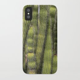 Wall of Cactus iPhone Case