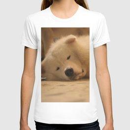 padpad T-shirt