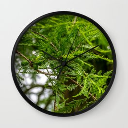 Conifer Branches Wall Clock
