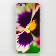 Palemo velvertine iPhone & iPod Skin