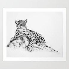 Leopard painting Art Print