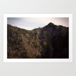 Mountain Cleft Art Print