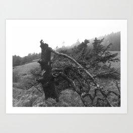 Tim Burton Tree Art Print