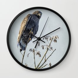 Red-Tailed Hawk, Rufous Morph Wall Clock