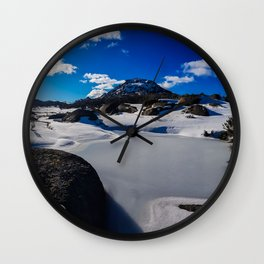 Buffalo Bluebird Wall Clock