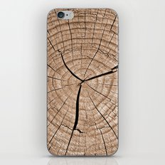 Tree Trunk iPhone & iPod Skin