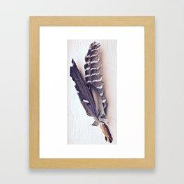 Sacred Smudging, Feather Fan Framed Art Print