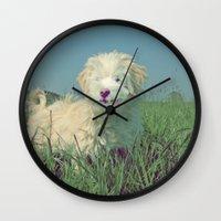 puppy Wall Clocks featuring PUPPY  by Monika Strigel