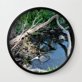 Little Stream in the Forest Wall Clock