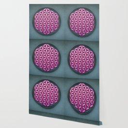 Flower Of Live - Pink Beauty Wallpaper