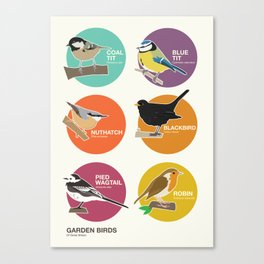 Garden Birds of Great Britain Canvas Print