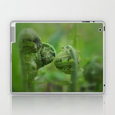 Spring Unfolding II Laptop & iPad Skin