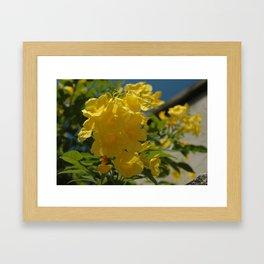 Yellow Gold Framed Art Print