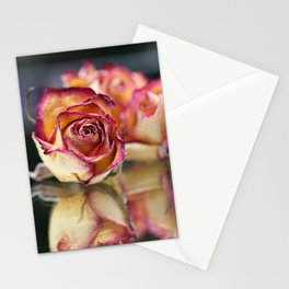 Dried Rose And Reflection In Mirror Stationery Cards