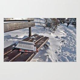 Winter in park Rug