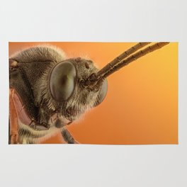 Insect IV Rug