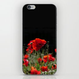 Red Poppies in bright sunlight iPhone Skin