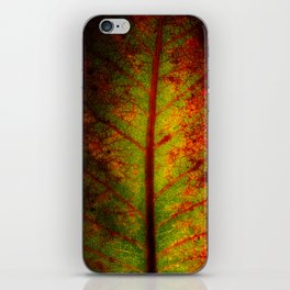 Autumn Leaf iPhone Skin