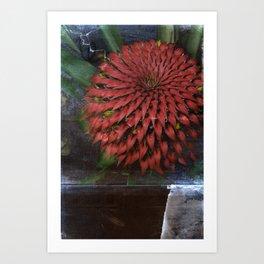 Flora Endemica #004 Art Print