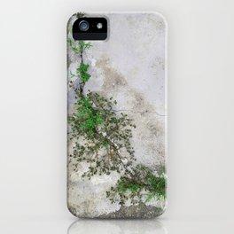 Through all the Cracks We Had iPhone Case