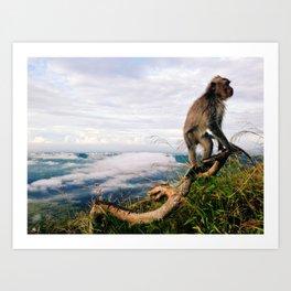 monkeys 2 Art Print