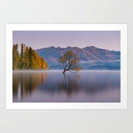 That Wanaka Tree II Art Print
