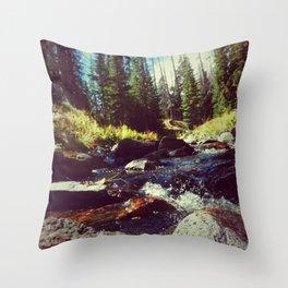 Walk on Water Throw Pillow