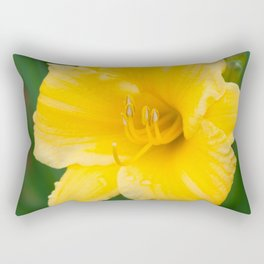 Yellow Daylily by Teresa Thompson Rectangular Pillow