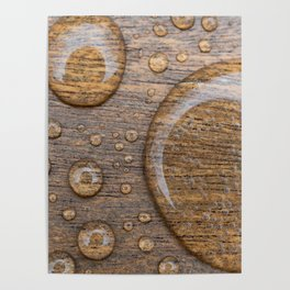 Water Drops on Wood 3 Poster