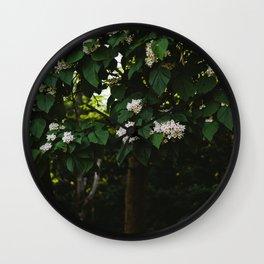 Catalpa Wall Clock
