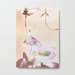 Lumen S5 VE4 Metal Print