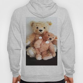 I Love Teddy Bears Hoody