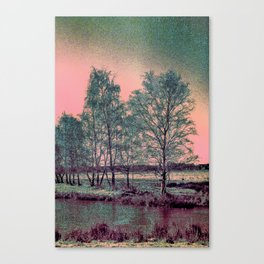 Abstract Winter Landscape, Sun and Birch Trees Canvas Print