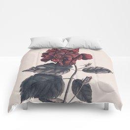 Flower near me 7 Comforters